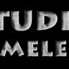 Logo KAMELEON.jpg1