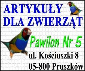 Sklep Zoologiczny Amadyn
