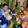 Dzikie papużki w poranku teatralnym