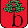 Samorząd: III sesja Rady Miejskiej w Brwinowie