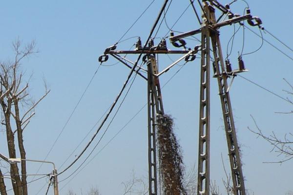 Przerwy w dostępie do elektryczności